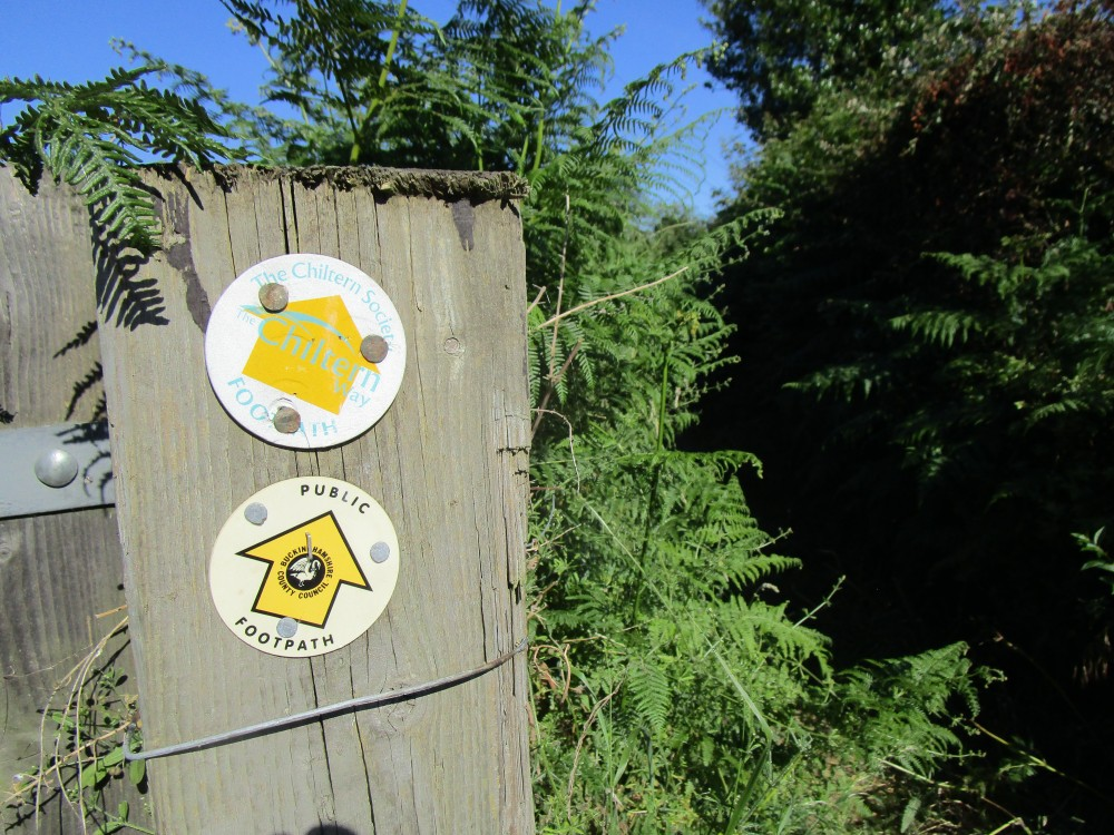 Chinnor dog walk and pub, Buckinghamshire - Chilterns dog walk and dog-friendly pub