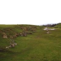 M40 Junction 12 dog walk, Warwickshire - Dog walks in Warwickshire