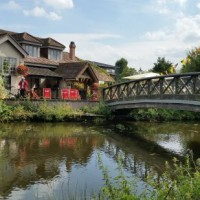 A412 Dog walk and dog-friendly country pub near Ruislip, Hertfordshire