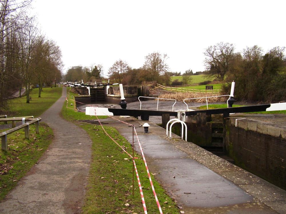 M40 Junction 15 dog walk and dog-friendly cafe, Warwickshire - Dog walks in Warwickshire