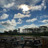 Riverside dog walks and swimming, and a pub, Suffolk - Suffolk dog-friendly pub and dog walk