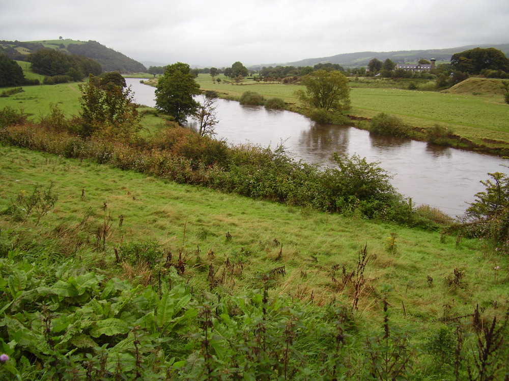 M6 Junction 34 or 35 Crook o' Lune, Lancashire - Dog walks in Lancashire