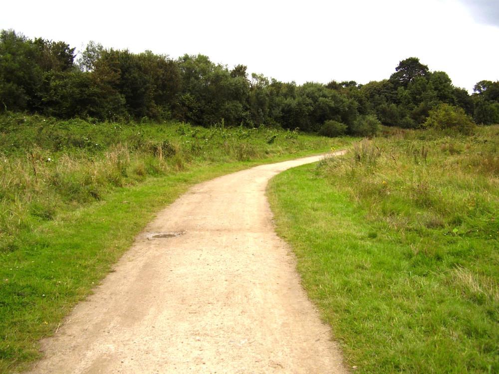 Stadt Moers Country Park, Merseyside - Dog walks in Merseyside