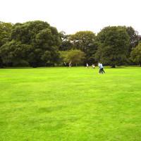 Croxteth dog walks, Merseyside - Dog walks in Merseyside