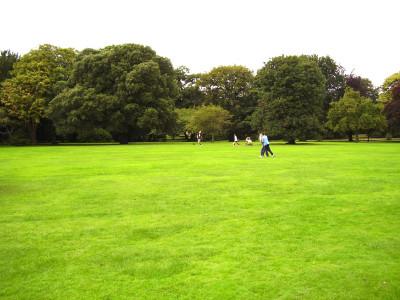 Croxteth dog walks, Merseyside / Lancashire - Driving with Dogs