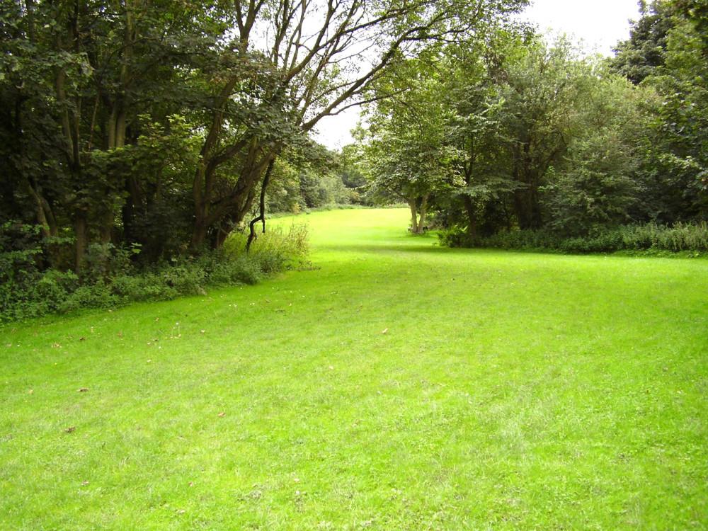 M58 Junction 3 Siding Lane Nature Reserve, Lancashire - Dog walks in Lancashire