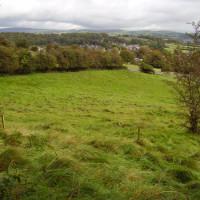 M6 Junction 35 dog walk near Warton, Lancashire - Dog walks in Lancashire