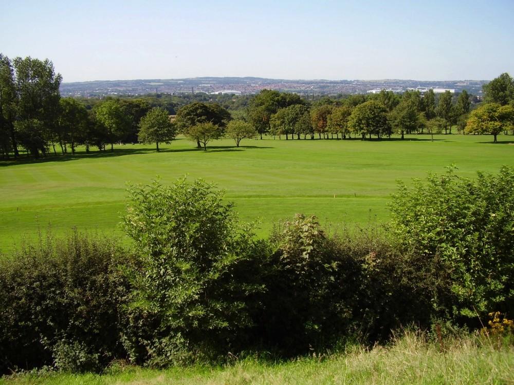 M61 Junction 6 country park dog walk, Lancashire - Dog walks in Lancashire