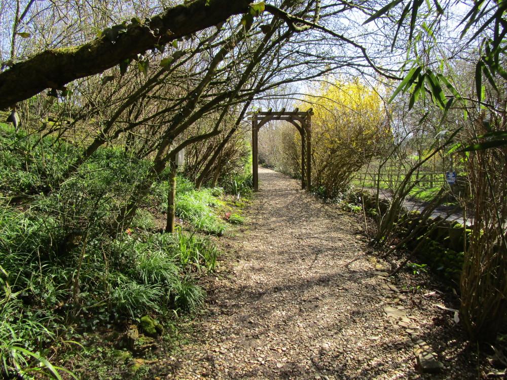 A361 dog-friendly inn and dog walk near Chipping Norton, Oxfordshire - Dog walks in Oxfordshire