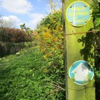 Dog walk and dog-friendly pub near Moreton in Marsh, Warwickshire - Warwickshire dog-friendly pubs and walks.JPG