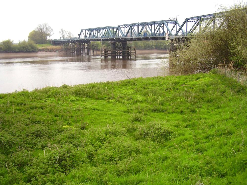 M62 Junction 37 riverside dog walk, Yorkshire - Dog walks in Yorkshire