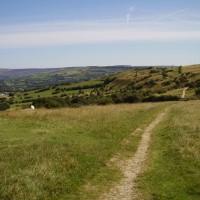 Werneth Low dog walks near Hyde, Cheshire - Dog walks in Cheshire