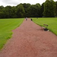 M74 Junction 10 dog walk in Lesmahagow, Scotland - Dog walks in Scotland