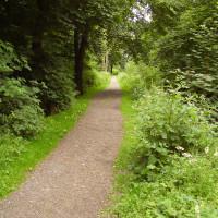M74 Junction 15 dog walks, Scotland - Dog walks in Scotland