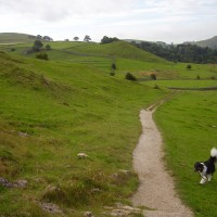 Hartington dog-friendly pub and short dog walk, Derbyshire - Peak District dog-friendly pub and dog walk