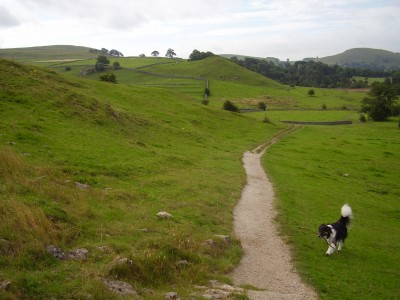 White Peak dog-friendly pub and short dog walk, Derbyshire - Driving with Dogs