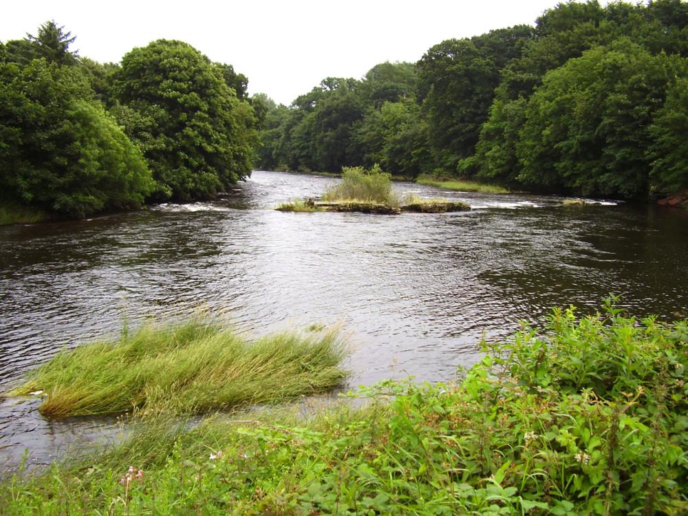 M74 Junction 20 River Annan dog walk, Scotland - Dog walks in Scotland