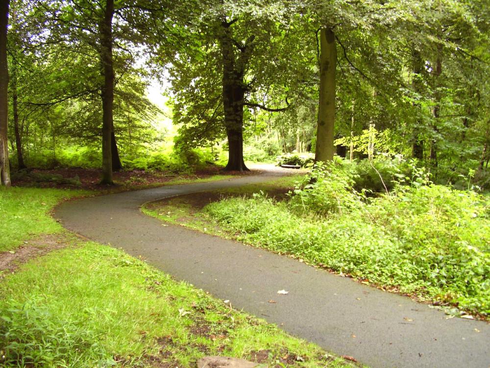M876 Junction 2 dog walk near Stirling, Scotland - Dog walks in Scotland