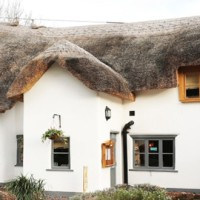 A358 hidden historic inn, Somerset - Somerset dog friendly pub and dog walk