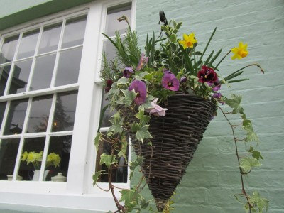 A281 dog-friendly pub and walk, West Sussex - Driving with Dogs