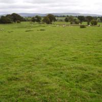M6 Junction 43 River Eden dog-friendly pub and dog walk, Cumbria