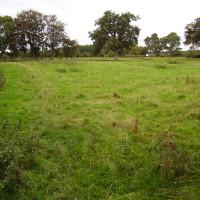 M6 Junction 43 River Eden dog-friendly pub and dog walk, Cumbria - 3