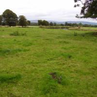 M6 Junction 44 dog walk through history, Cumbria