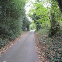 Ashford area dog-friendly pub and dog walk, Kent - Kent dog-friendly pubs with dog walks