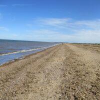 Snettisham dog-friendly beach, Norfolk - Norfolk dog-friendly beaches.JPG