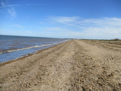 Snettisham dog-friendly beach, Norfolk - Driving with Dogs
