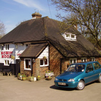 Bluebell Hill dog walk and dog-friendly pub, Kent - Dog walks in Kent