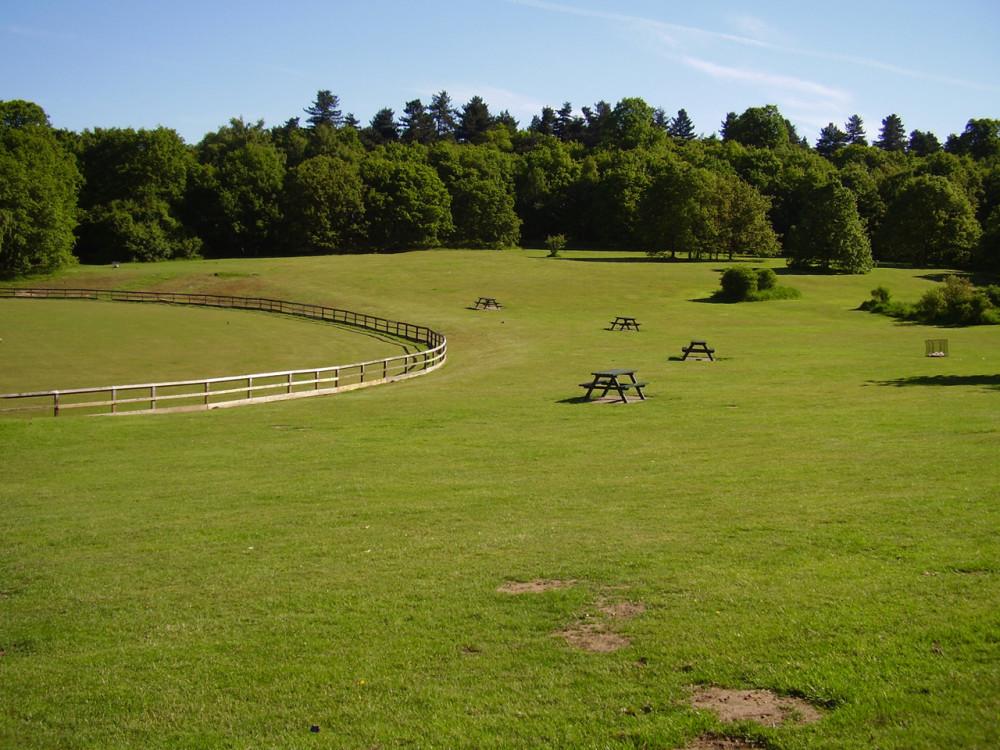 A60 Country Park dog walk, Nottinghamshire - Dog walks in Nottinghamshire