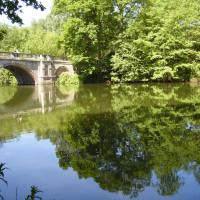 Clumber Park dog walk and cafe, Nottinghamshire - Dog walks in Nottinghamshire
