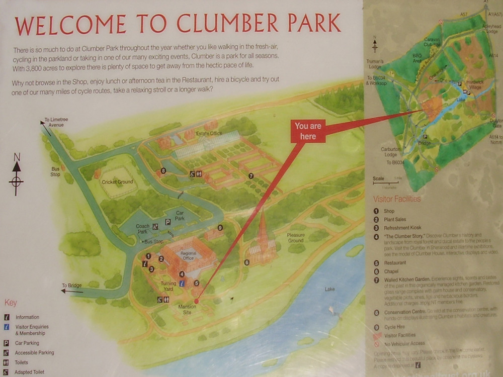 Clumber Park dog walk and cafe, Nottinghamshire - Dog walks in Nottinghamshire