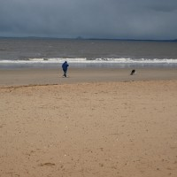 Edinburgh dog-friendly beach, Lothian, Scotland - Dog walks in Scotland