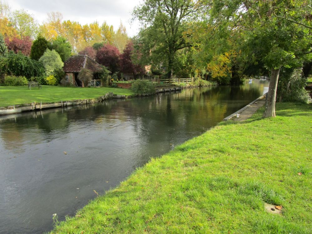 A4 Dog walk and dog-friendly inn, Berkshire - Berkshire dog-friendly pub and dog walk