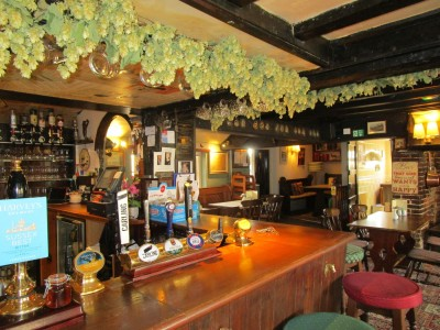 A265 Kipling country dog walk and dog-friendly pub, East Sussex - Driving with Dogs