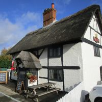 M4 dog friendly pub and dog walk near Pangbourne, Berkshire - Berkshire dog-friendly pub and dog walk