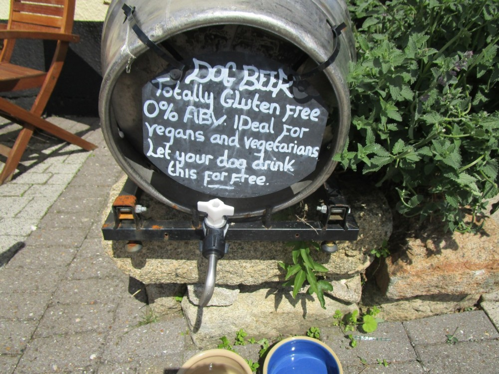 A38 dog-friendly pub overlooking Dartmoor, Devon - Devon dog walk and dog-friendly pub.JPG