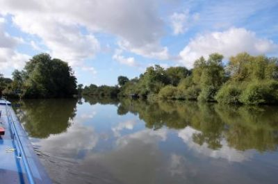 A dog walk on the Thames Path, Oxfordshire - Driving with Dogs
