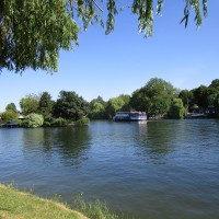 Henley on Thames dog walks and pubs, Oxfordshire - Henley-on-Thames dog walks and dog-friendly pubs