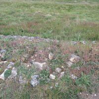 A walk over the Roman town of Venta Icenorum, Norfolk - Dog walk in Roman times Norfolk