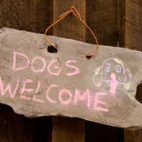 Dog-friendly pub near Rugby, Warwickshire - Warwickshire dog-friendly pubs.jpg