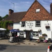 Village inn and dog walk near Petersfield, Hampshire - Hampshire dog-friendly pub and dog walk