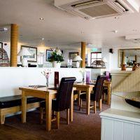 A379 dog-friendly pub and walk near Salcombe, Devon - Devon dog-friendly pubs and dog walks.jpg