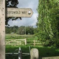 M4 Junction 18 dog walks and dog-friendly pub, South Gloucestershire - Dog walks near the M4.jpg