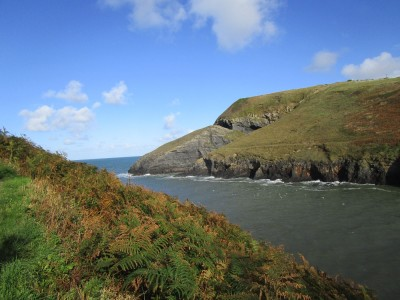 Ceibwr dog-friendly beach, Wales - Driving with Dogs