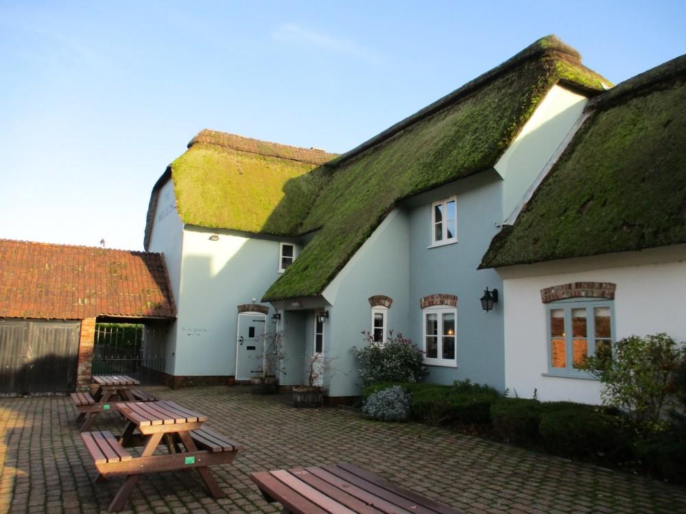 A31 dog-friendly pub near Winterbourne, Dorset - IMG_0128.JPG