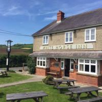 A35 doggiestop with pub and walk, Dorset - Dorset dog-friendly pub and dog walk