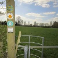 Village pub and dog walk near Moreton, Warwickshire - Warwickshire dog-friendly pubs and walks.JPG